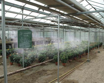 humidificacion-invernadero